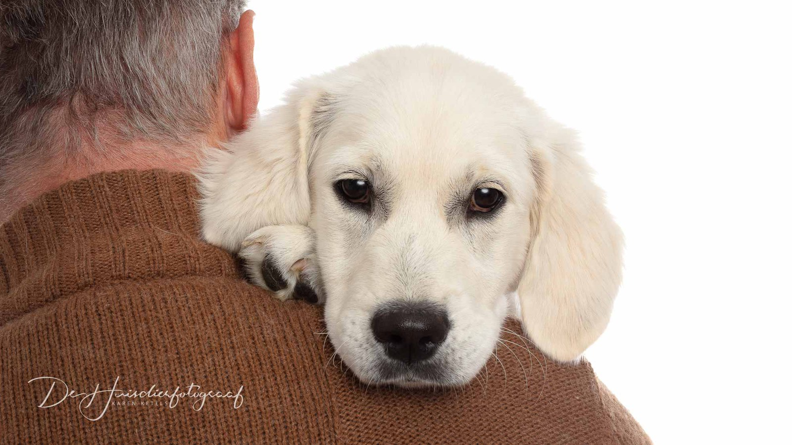 Portret van een witte golden retriever pup op de arm van haar groten mensenvriend. Door De Huisdierfotograaf