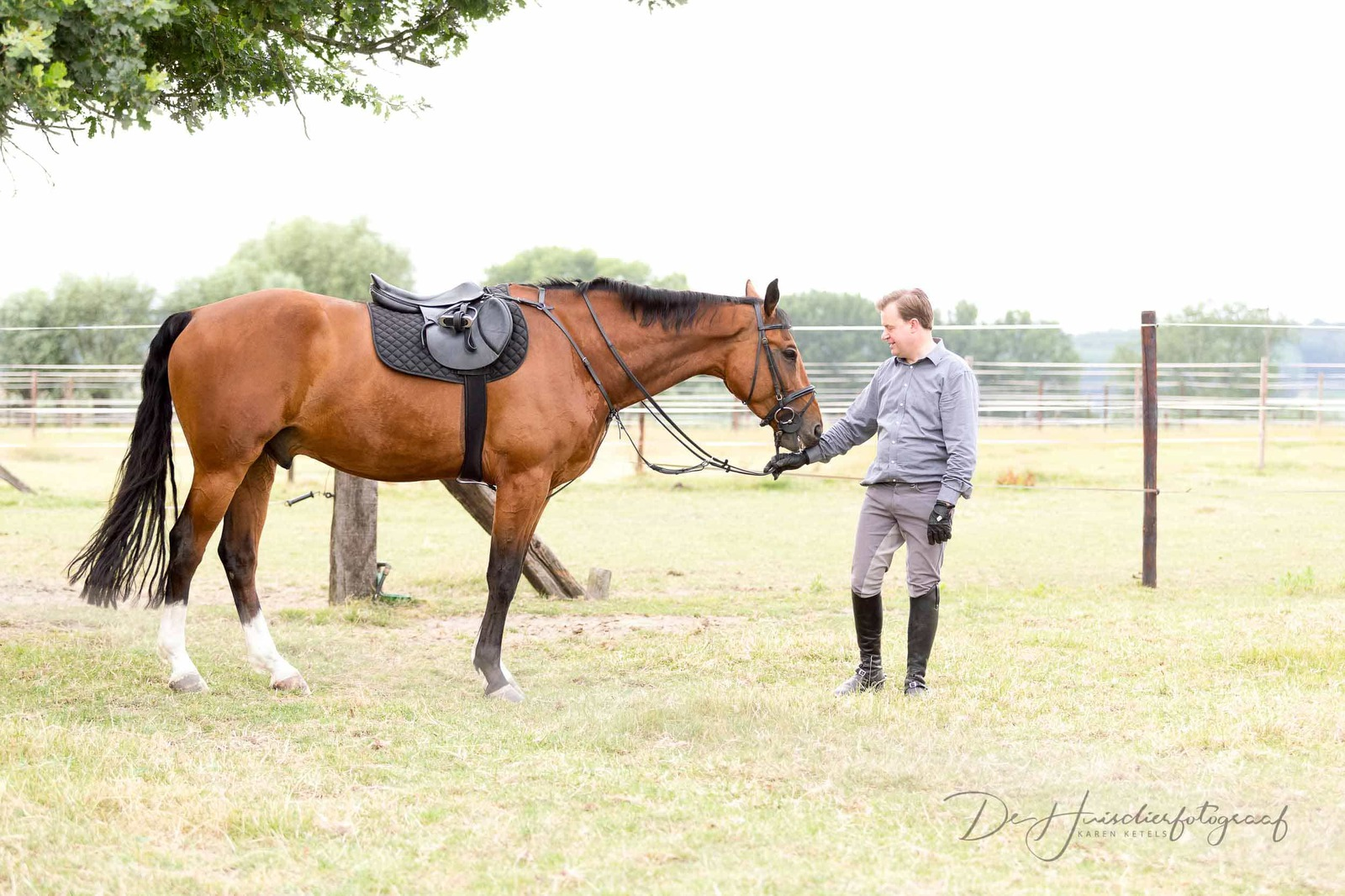 Gezadeld paard groet zijn baasje in de weide. Portret door De Huisdierfotograaf