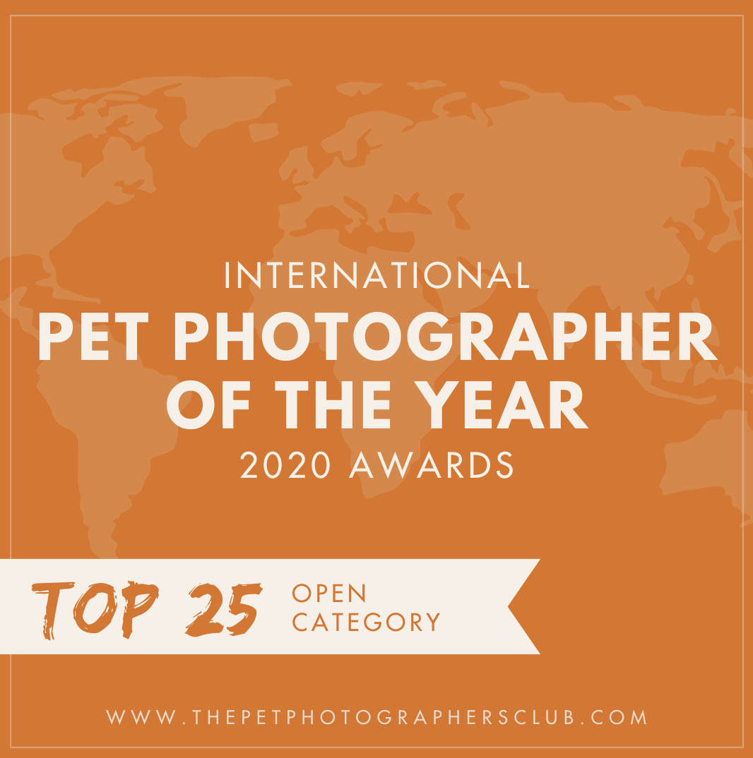 Pet Photographer of the Year 2020 top 25 Open Categorie